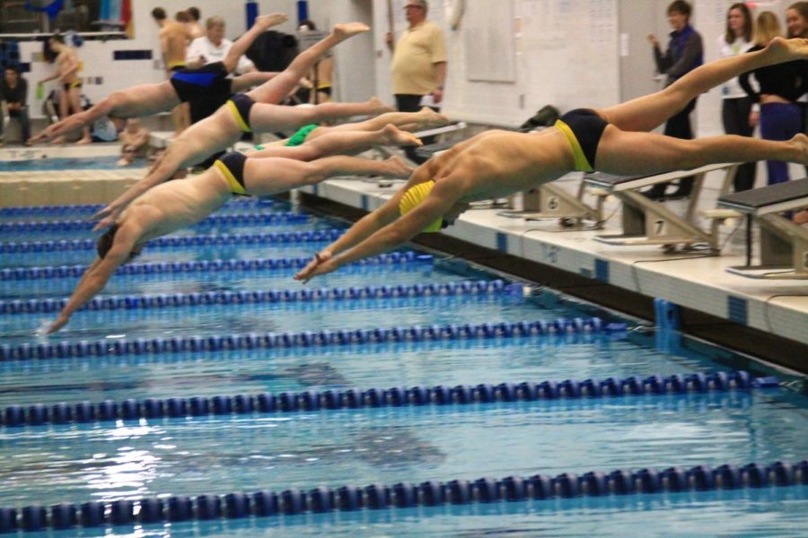 Swimming towards the final races