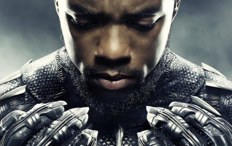 The trending movie of the year, ¨Black Panther¨