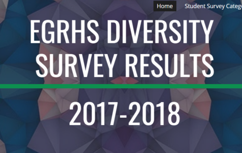 Diversity survey results now displayed on website