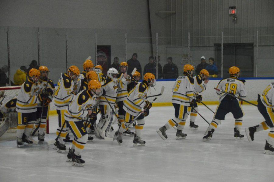The boys hockey team