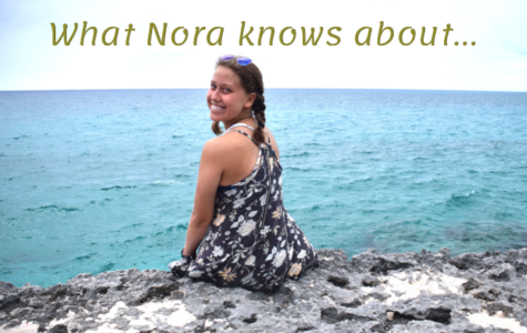 What Nora knows…about grades