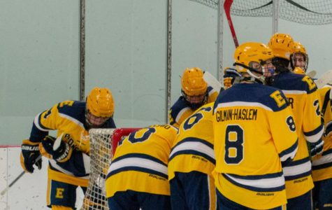 Boys hockey exceeding expectations this season