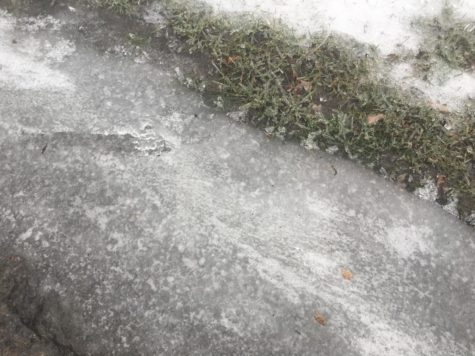 EGR schools have icy 'day on'