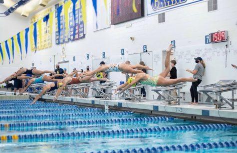 Girls Swim lead an undefeated season